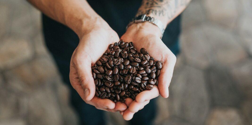 kávové boby, káva